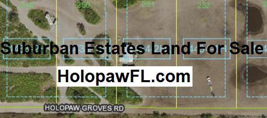 Suburban Estates Holopaw Florida HolopawFL land for sale