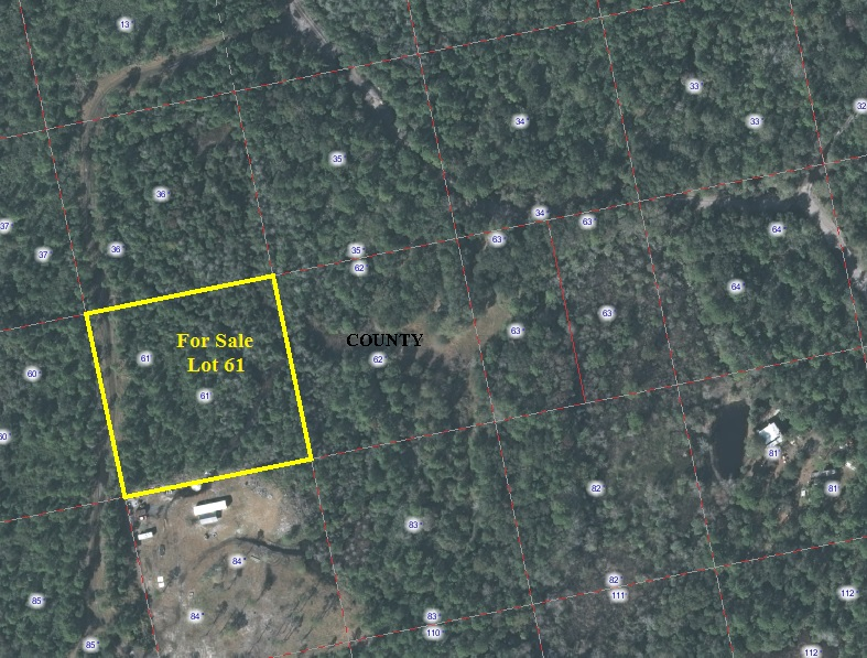 Florida Hunt Camp Lot For Sale Volusia County Old5a
