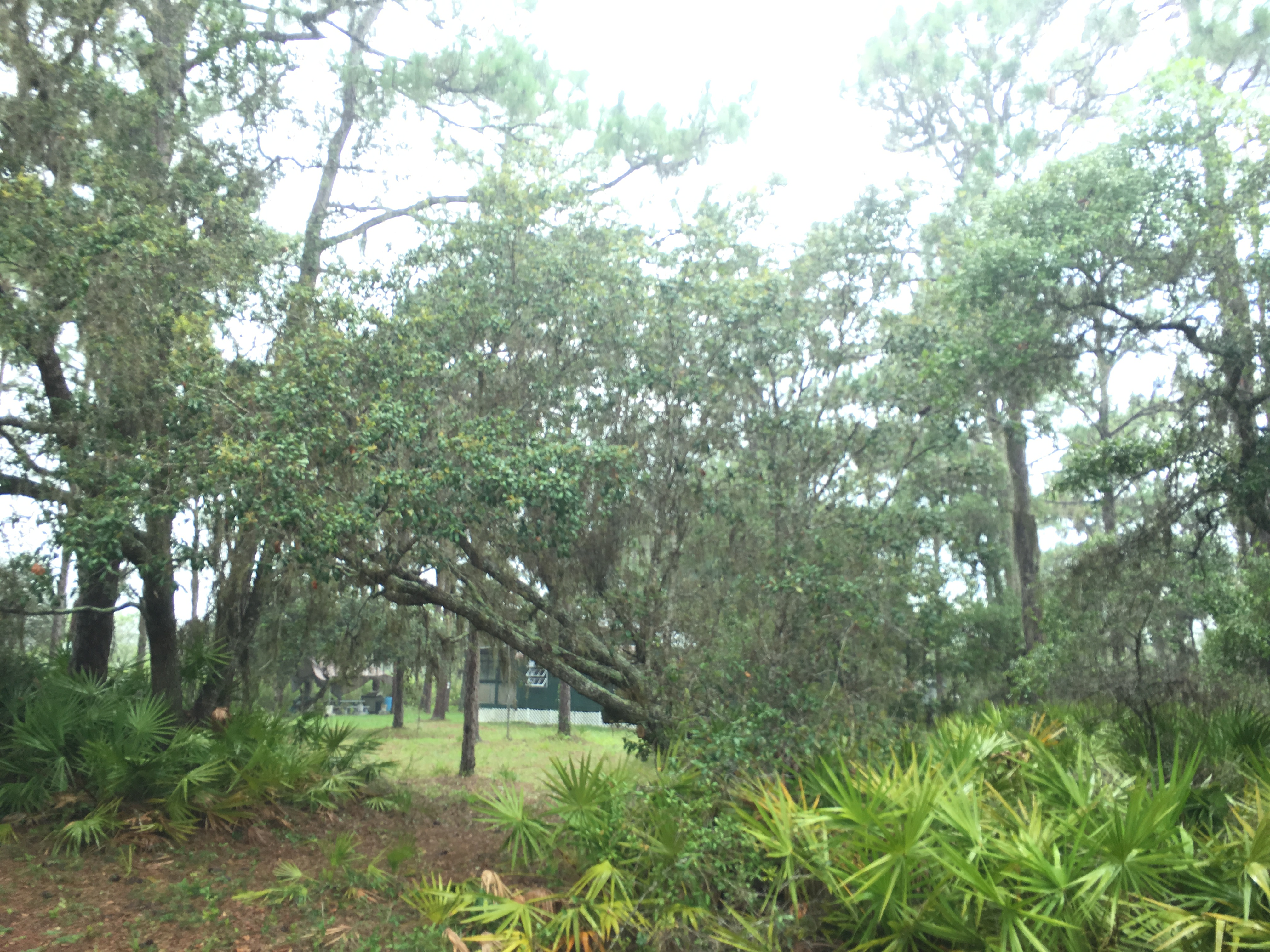 River Ranch Florida Recreational RRPOA Property Camp lot Campsite