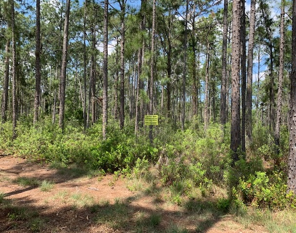 River Ranch Acres Camp lot for sale rrpoa 4x4 atv hunt