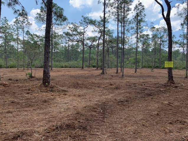 River Ranch Acres RR RRPOA Camp lots for sale atv hunt 4x4